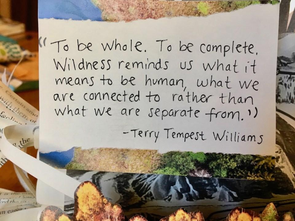 terry tempest williams quote