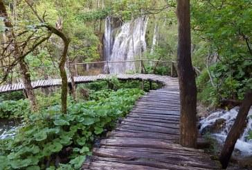 Enchanting Watery Walks in Magical Plitvice Lakes