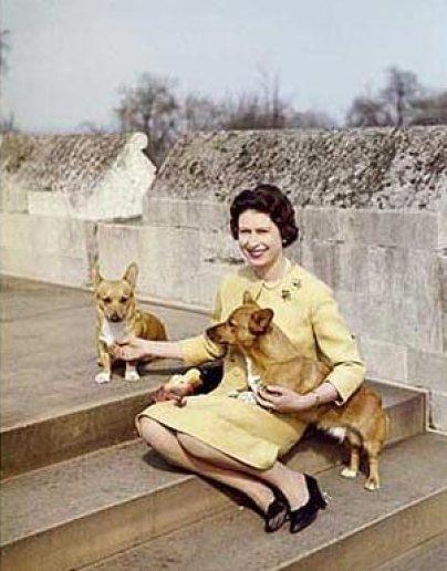 1962 Windsor.jpeg