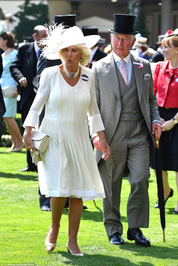 41941C9800000578-4620812-Camilla_looked_unflustered_by_the_soaring_heat_in_a_floaty_white-m-132_1497968183271.jpg
