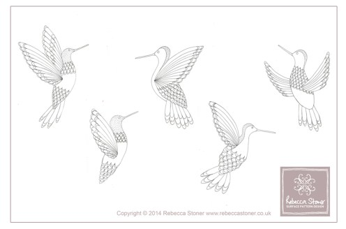 Hummingbird sketches © Rebecca Stoner www.rebeccastoner.co.uk
