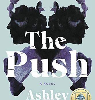 Book Recommendation: The Push by Ashley Audrain