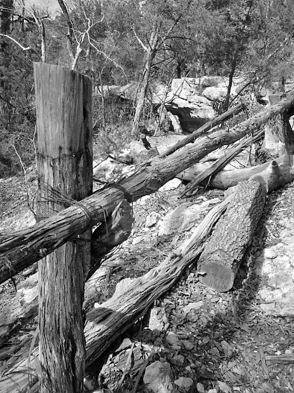 black-and-white-rustic-fence