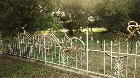 salado-bike-fence-2