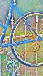 salado-bike-fence-5