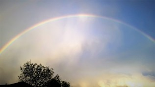 kens-rainbow