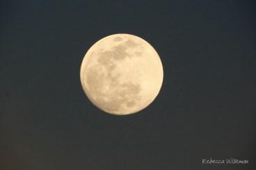 february-9-moon-signed