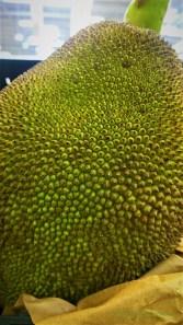 Dangerous Looking Fruit
