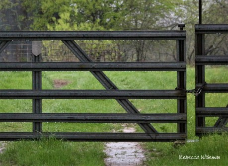 Farm Gate Detail