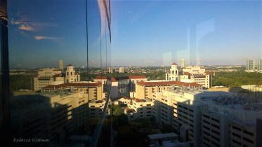 Houston Medical Center View