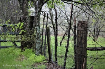 Hurricane & Barbed Wire Fence 2