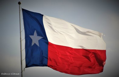 Lone Star Flag 1