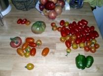 First harvest!