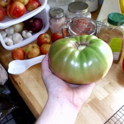 TOMATOZILLA. 1 lb, 1.1 oz Cherokee Purple.