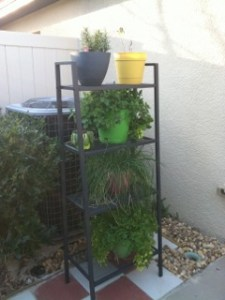 Using a plant stand to maximize space
