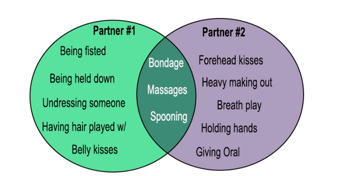 Vin diagram with sexual interests of partner #1 and #2. In the middle where the interests of the two partners overlap, we see the words bondage, massages, and spooning.