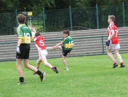 MunsterGAAOgPheil2017 Action14