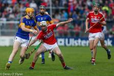 Cork V Tipp 2017 Photos Denis Flynn (21)