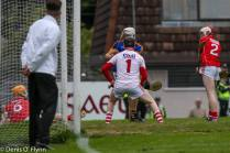 Cork V Tipp 2017 Photos Denis Flynn (59)