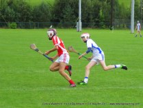 Og Iomaint CIT 2017 Cork V Waterford (11)