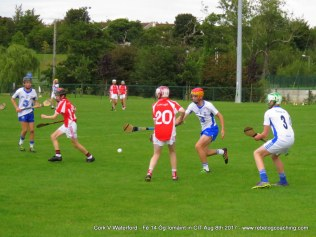 Og Iomaint CIT 2017 Cork V Waterford (19)