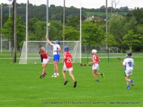 Og Iomaint CIT 2017 Cork V Waterford (26)