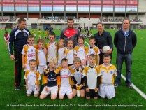 Teams U8 Football Blitz Pairc Ui Chaoimh Oct 14th 2017 (36)