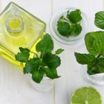 Lemon Balm - Rebel Retirement