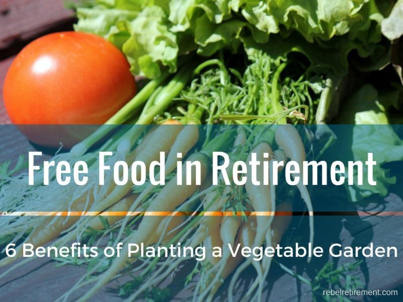 Free Food in Retirement Plus 6 Benefits of Planting a Vegetable Garden