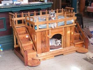 casinha de cachorro6