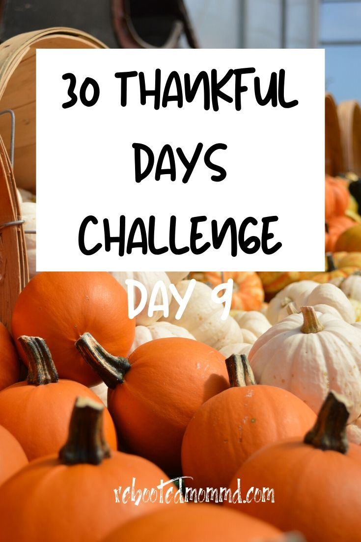 Day 9: Thankful for a Bounty of Fresh Food