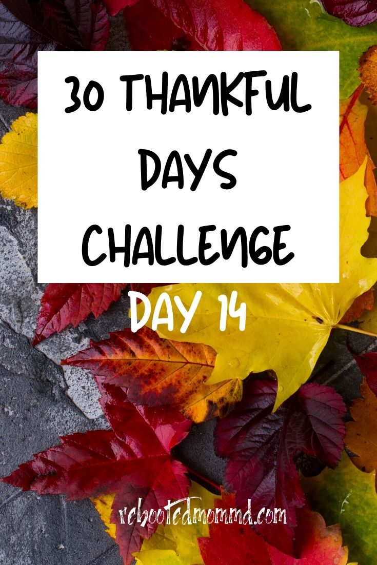 Day 14: Thankful for All Energy Sources that Power and Illuminate Our Lives