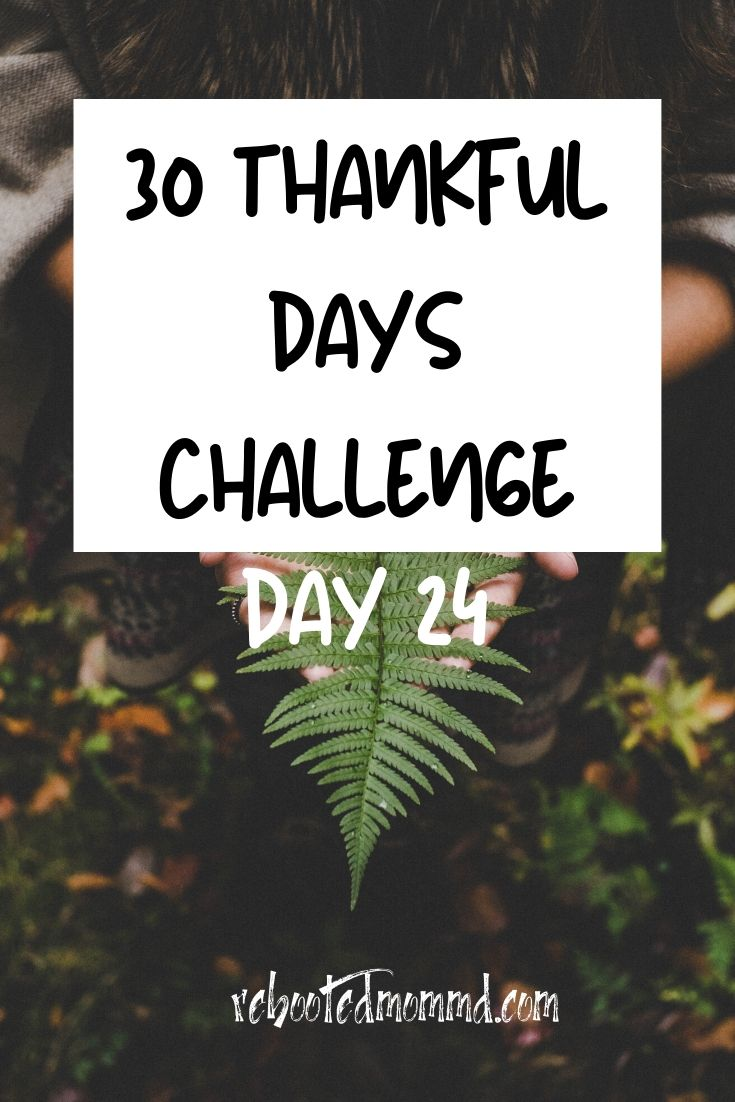 Day 24: Thankful for Peaceful Times and Peaceful People