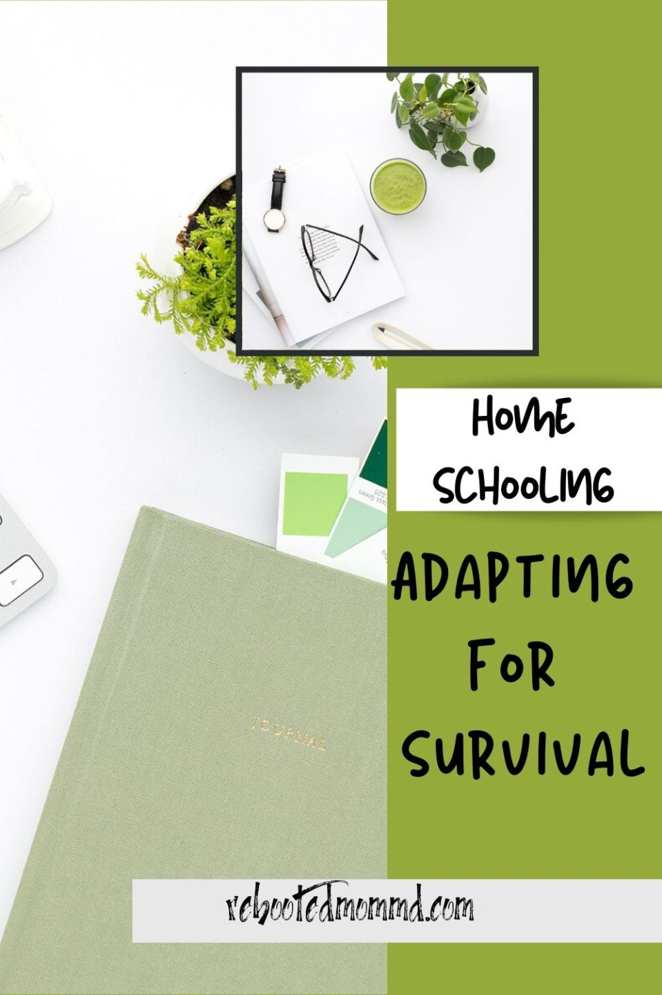 Homeschooling: Adapt to Survive