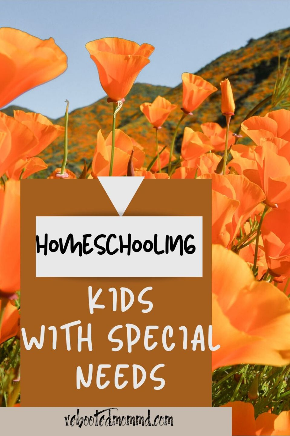 Homeschooling: Success for Kids With Learning Challenges