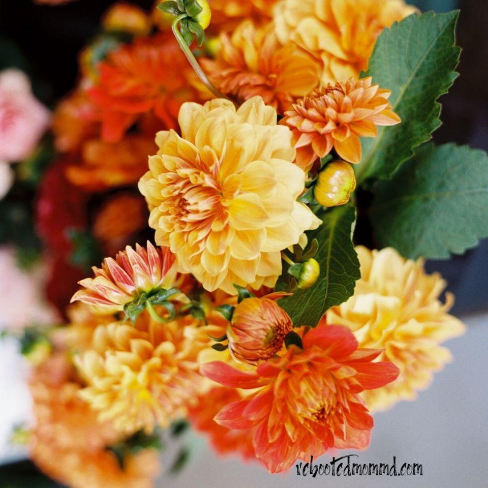 flowers special needs homeschooling