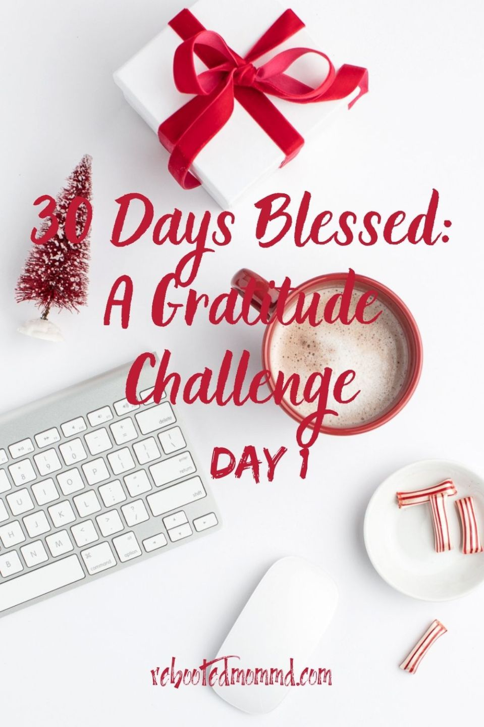 Day 1. Trying on an Attitude of Gratitude