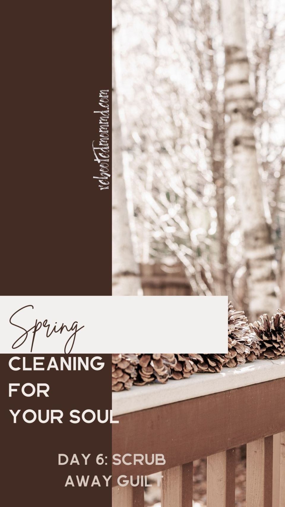Spring Cleaning for Your Soul, Day 6: Scrub Away Guilt