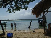 Tobago Feb 06 211