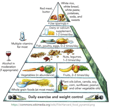 Harvard Food Pyramid Reboot Social