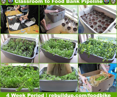 Classroom to Food Bank Pipeline at Ragsdale High School