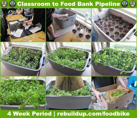 FB-FoodBank-Pipeline-Pic1-450
