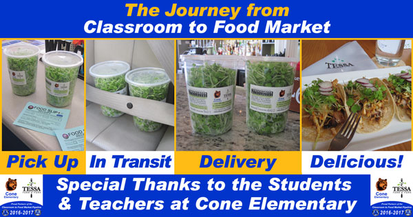 #ConeGreens Journey from Classroom to Food Market