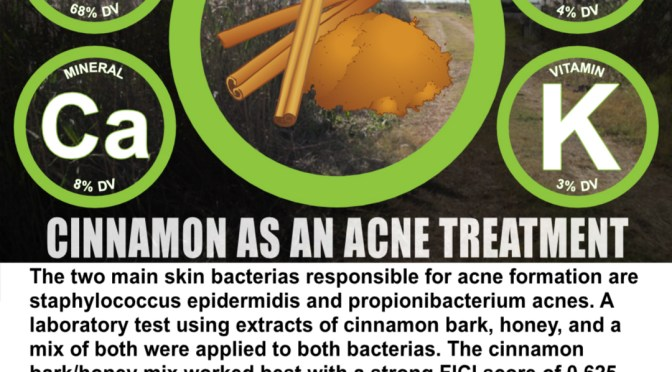 Cinnamon As An Acne Treatment