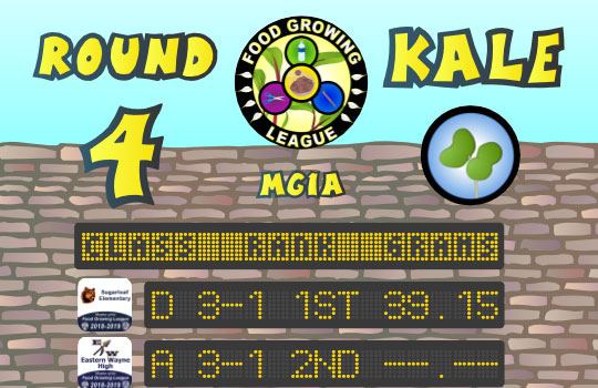 Round 4 Championship (Kale) 2018-2019 Fall Season - Food Growing League - ReBuildUp