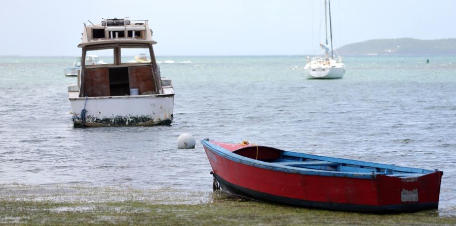 Imagen de varias embarcaciones. (GFR Media) (horizontal-x3)