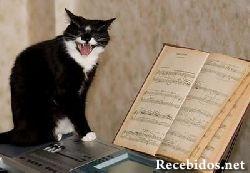 cat-soprana.jpg