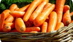 Bolo de Cenouras