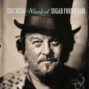 Zucchero - Wanted