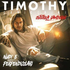 Timothy Cavicchini - Nudi e perpendicolari